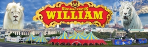 "Circus William Show 2015 ""Revolution der Manegenkunst"" auch in Dessau-Rosslau zu Gast"